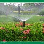 escolher um sistema de irrigação