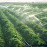 irrigação para agricultura