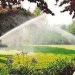 correto sistema de irrigação