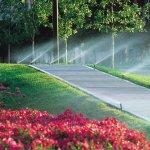 benefícios de um sistema de irrigação