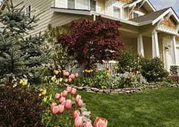 economizar com o jardim